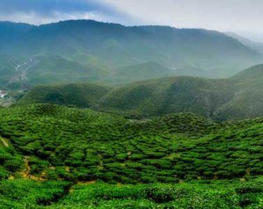 Places to see in Darjeeling