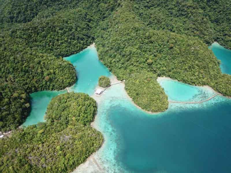 Sugba Lagoon among mangroves